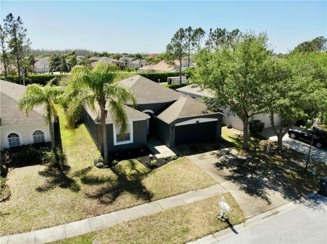 10219 Goldenbrook Way, Tampa, FL 33647 (MLS #T3114457) :: Team Bohannon Keller Williams, Tampa Properties