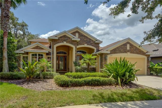 15741 Starling Water Drive, Lithia, FL 33547 (MLS #T3114557) :: The Duncan Duo Team