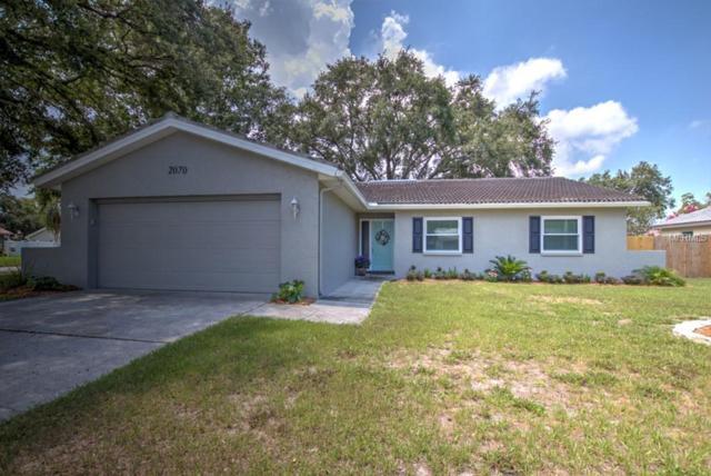 2070 Cormorant Drive, Palm Harbor, FL 34683 (MLS #T3114561) :: Burwell Real Estate
