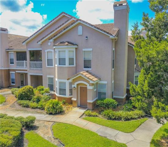 17994 Villa Creek Drive #17994, Tampa, FL 33647 (MLS #T3114673) :: Team Bohannon Keller Williams, Tampa Properties