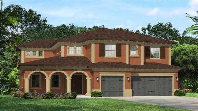 28909 Picana Lane, Wesley Chapel, FL 33543 (MLS #T3114743) :: Team Bohannon Keller Williams, Tampa Properties