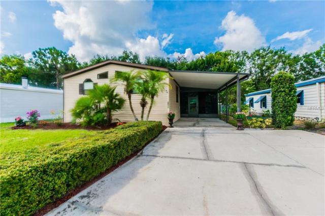 8930 Fox Trail, Tampa, FL 33626 (MLS #T3114778) :: Cartwright Realty