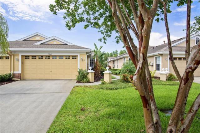 9849 Bridgeton Drive, Tampa, FL 33626 (MLS #T3114782) :: Cartwright Realty