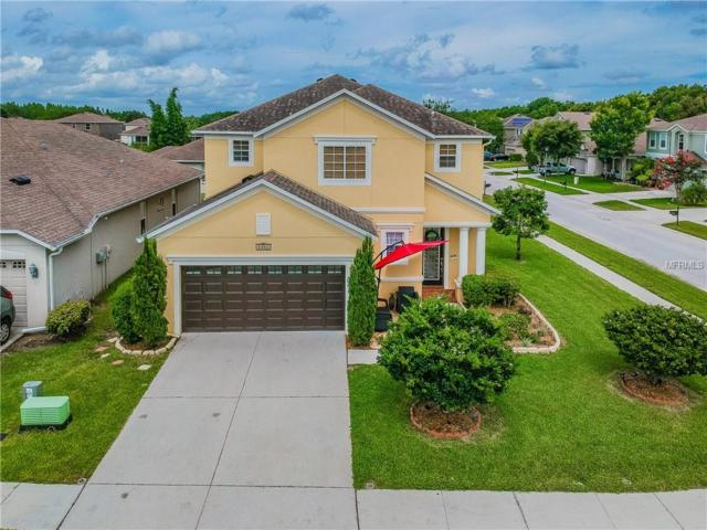 17931 Ayrshire Boulevard, Land O Lakes, FL 34638 (MLS #T3114870) :: Cartwright Realty