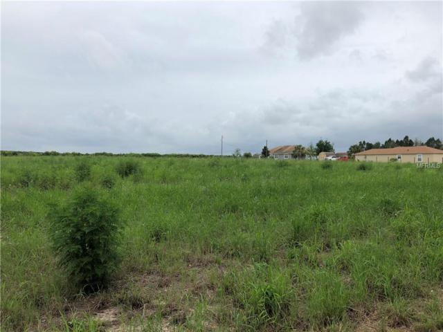 871 C F Kinney Road, Waverly, FL 33877 (MLS #T3114877) :: The Lockhart Team
