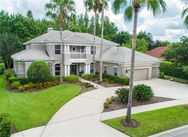 9822 Emerald Links Drive, Tampa, FL 33626 (MLS #T3114888) :: Chenault Group