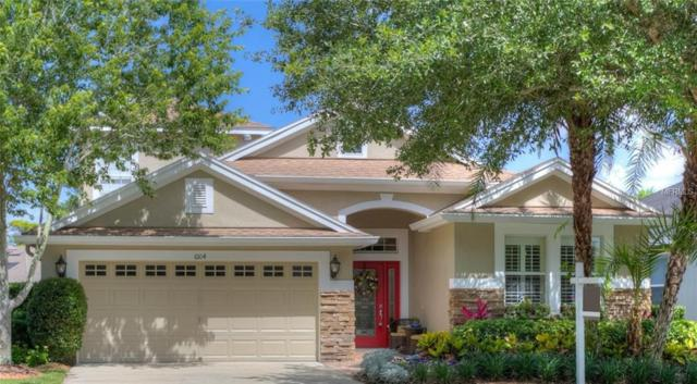 6104 Gannetwood Place, Lithia, FL 33547 (MLS #T3114904) :: The Duncan Duo Team