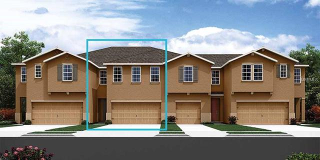17835 Stella Moon Place #58, Lutz, FL 33558 (MLS #T3115091) :: The Duncan Duo Team