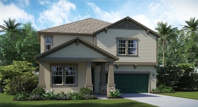 13902 Snowy Plover Lane, Riverview, FL 33579 (MLS #T3115092) :: The Duncan Duo Team