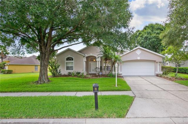 6040 Catlin Drive, Tampa, FL 33647 (MLS #T3115233) :: Medway Realty