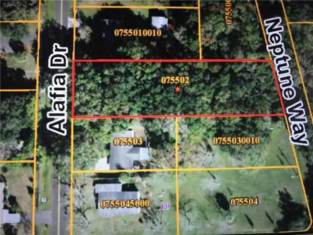 Alafia Drive, Riverview, FL 33578 (MLS #T3115351) :: The Lockhart Team