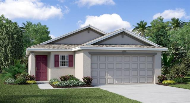 Address Not Published, Wimauma, FL 33598 (MLS #T3115600) :: Griffin Group