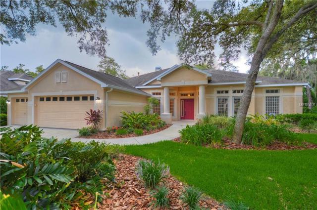 15920 Sorawater Drive, Lithia, FL 33547 (MLS #T3115619) :: The Duncan Duo Team