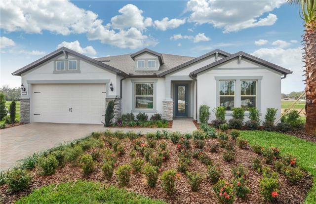 10909 Lemon Lake Blvd, Orlando, FL 32836 (MLS #T3115900) :: The Duncan Duo Team