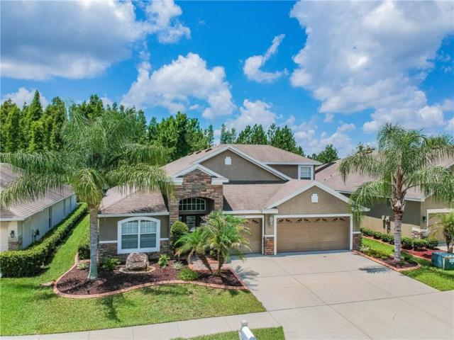 31632 Holcomb Pass, Wesley Chapel, FL 33543 (MLS #T3115981) :: The Duncan Duo Team