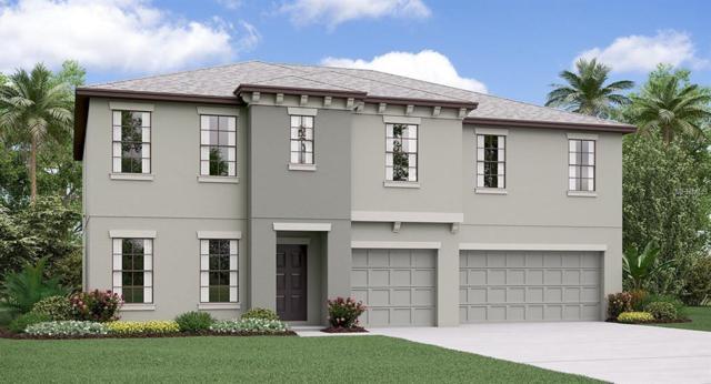 9715 Sage Creek Drive, Ruskin, FL 33573 (MLS #T3116136) :: TeamWorks WorldWide