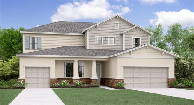 9835 Sage Creek Drive, Ruskin, FL 33573 (MLS #T3116158) :: TeamWorks WorldWide