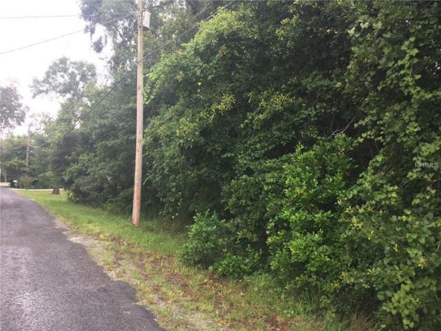 Quail Lane, Lutz, FL 33548 (MLS #T3116238) :: Griffin Group