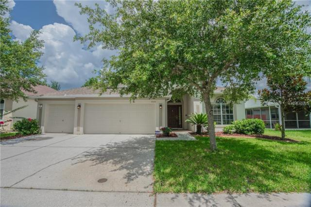 8240 Swann Hollow Drive, Tampa, FL 33647 (MLS #T3116275) :: Team Bohannon Keller Williams, Tampa Properties