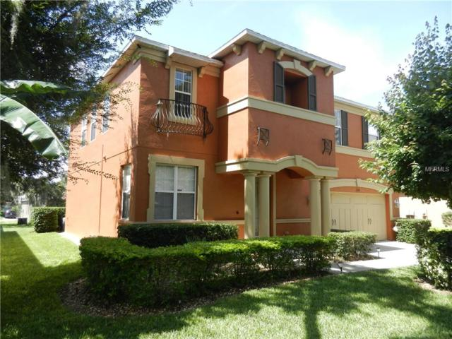 11128 Hartford Fern Drive, Riverview, FL 33569 (MLS #T3116438) :: The Light Team