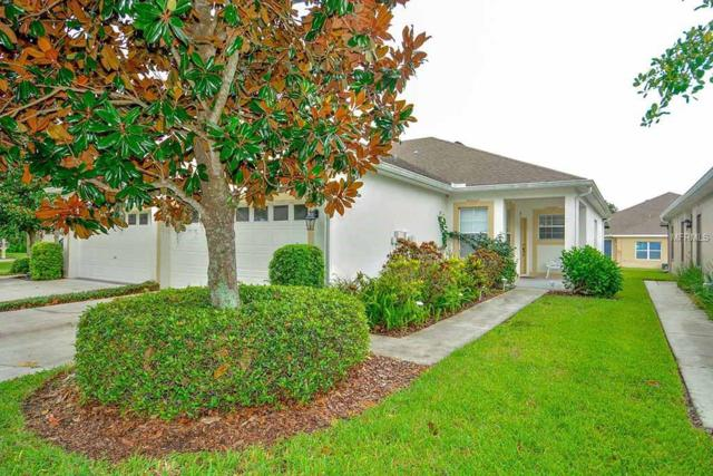 6924 Surrey Oaks Drive, Apollo Beach, FL 33572 (MLS #T3116525) :: The Duncan Duo Team