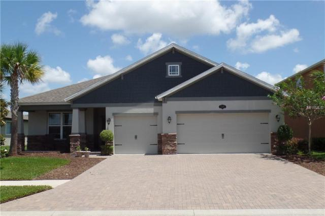 1896 Fox Grape Loop, Lutz, FL 33558 (MLS #T3116551) :: The Duncan Duo Team