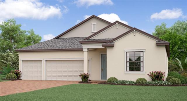 13305 Orca Sound Drive, Riverview, FL 33579 (MLS #T3116639) :: The Duncan Duo Team