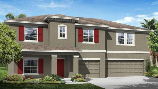 Address Not Published, Wesley Chapel, FL 33545 (MLS #T3116654) :: Team Bohannon Keller Williams, Tampa Properties