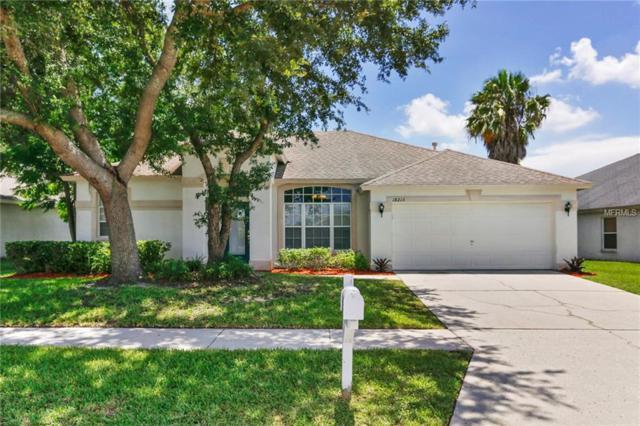 18213 Collridge Drive, Tampa, FL 33647 (MLS #T3116761) :: Team Bohannon Keller Williams, Tampa Properties