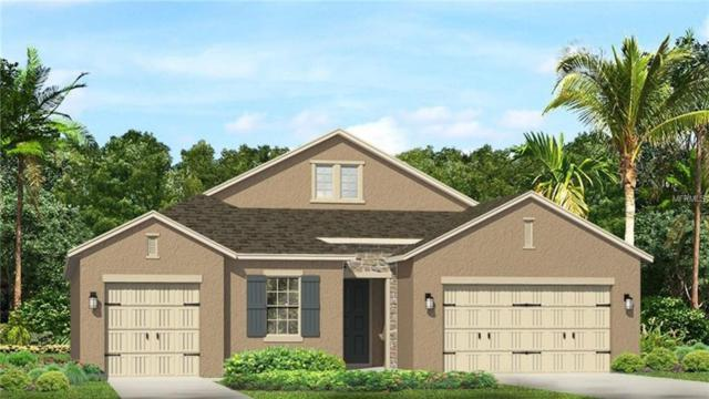 17922 Woodland View Drive, Lutz, FL 33548 (MLS #T3116837) :: The Duncan Duo Team