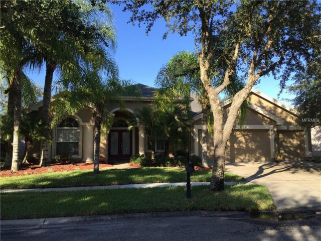 19320 Autumn Woods Avenue, Tampa, FL 33647 (MLS #T3116856) :: Team Bohannon Keller Williams, Tampa Properties