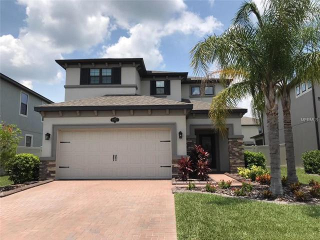 1977 Nature View Drive, Lutz, FL 33558 (MLS #T3116878) :: The Duncan Duo Team