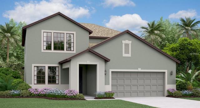 13635 Ashlar Slate Place, Riverview, FL 33579 (MLS #T3116879) :: The Duncan Duo Team