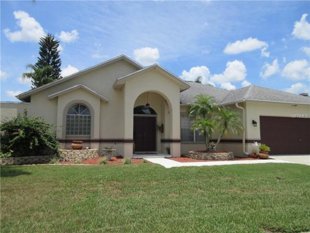 22633 Glyndon Point Road, Lutz, FL 33549 (MLS #T3116885) :: The Duncan Duo Team