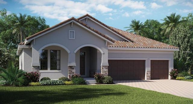 11915 Cinnamon Fern Drive, Riverview, FL 33579 (MLS #T3116908) :: The Light Team