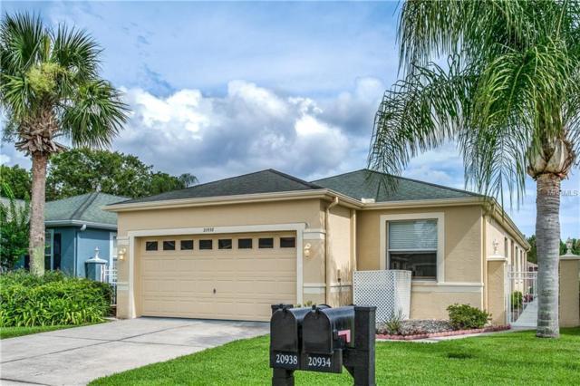 20938 Tangor Road, Land O Lakes, FL 34637 (MLS #T3116915) :: The Duncan Duo Team