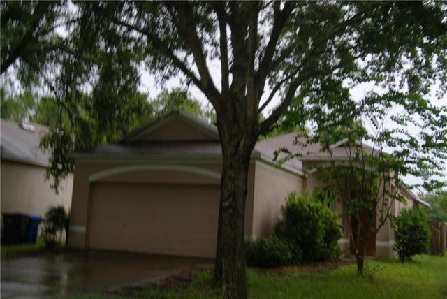6205 Kiteridge Drive, Lithia, FL 33547 (MLS #T3117023) :: The Duncan Duo Team