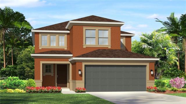 4495 Tramanto Lane, Wesley Chapel, FL 33543 (MLS #T3117150) :: Team Bohannon Keller Williams, Tampa Properties