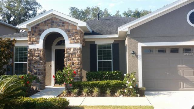 15850 Starling Water Drive, Lithia, FL 33547 (MLS #T3117205) :: The Duncan Duo Team