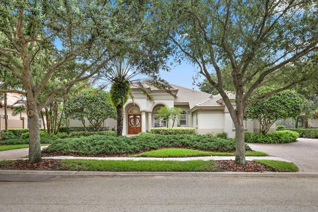 1208 Playmoor Drive, Palm Harbor, FL 34683 (MLS #T3117368) :: O'Connor Homes