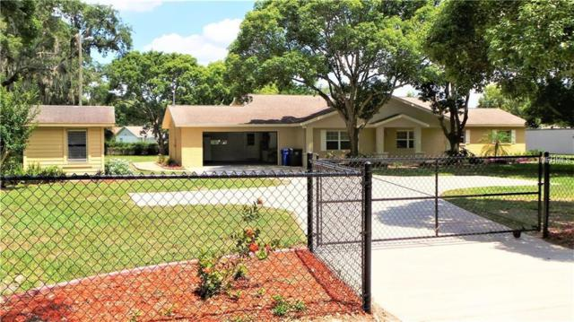 4301 Culbreath Road, Valrico, FL 33596 (MLS #T3117435) :: Team Bohannon Keller Williams, Tampa Properties