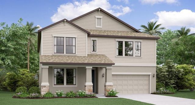 4599 Coachford Drive, Wesley Chapel, FL 33543 (MLS #T3117461) :: The Duncan Duo Team