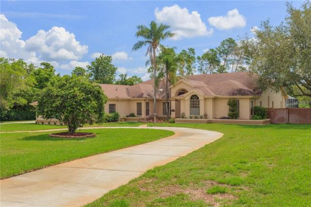 8906 Skymaster Drive, New Port Richey, FL 34654 (MLS #T3117597) :: Mark and Joni Coulter | Better Homes and Gardens