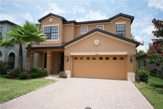 15216 Anguilla Isle Avenue, Tampa, FL 33647 (MLS #T3117653) :: Team Bohannon Keller Williams, Tampa Properties