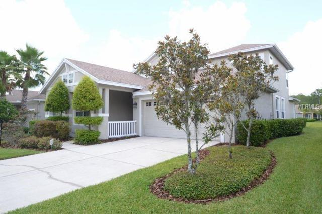 20127 Heritage Point Drive, Tampa, FL 33647 (MLS #T3117690) :: Team Bohannon Keller Williams, Tampa Properties