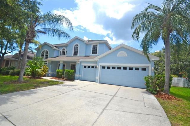 10246 Shadow Branch Drive, Tampa, FL 33647 (MLS #T3117698) :: Team Bohannon Keller Williams, Tampa Properties