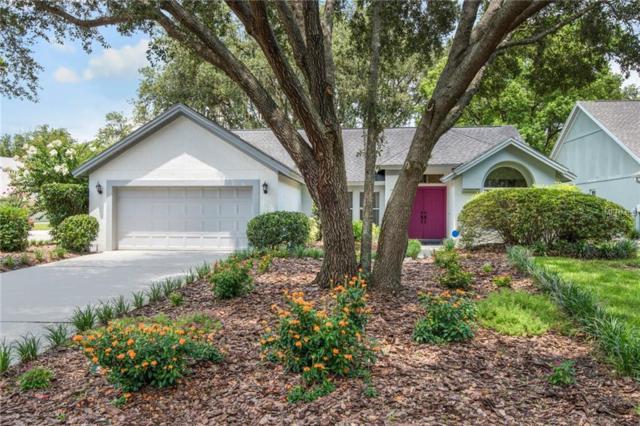 16102 Dowling Court, Tampa, FL 33647 (MLS #T3117838) :: Delgado Home Team at Keller Williams