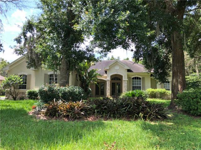 6103 Kingbird Manor Drive, Lithia, FL 33547 (MLS #T3117912) :: Team Bohannon Keller Williams, Tampa Properties