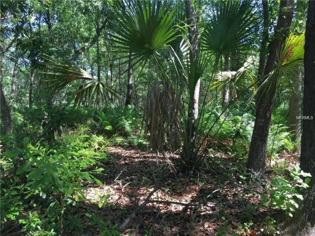 Lot 22 Lake Hills Drive, Riverview, FL 33569 (MLS #T3117979) :: The Duncan Duo Team