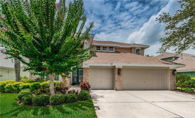 10415 Greenmont Drive, Tampa, FL 33626 (MLS #T3118013) :: O'Connor Homes